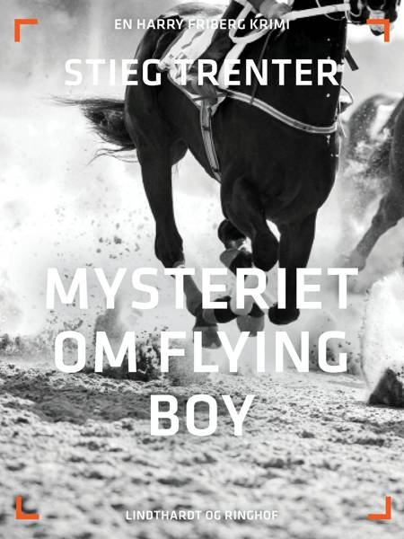 Mysteriet om Flying Boy af Stieg Trenter