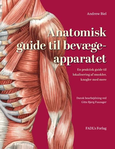 Anatomisk guide til bevægeapparatet af Andrew Biel