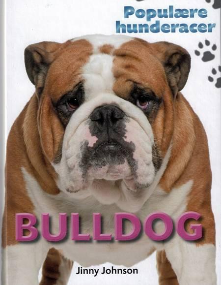 Bulldog af Jinny Johnson