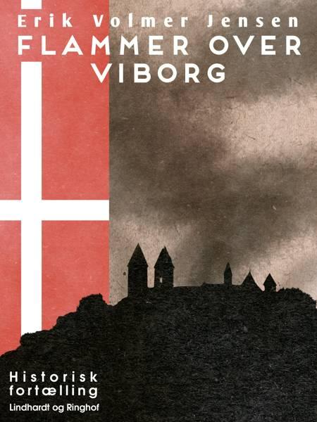Flammer over Viborg af Erik Volmer Jensen