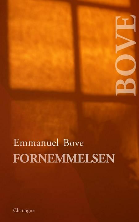 Fornemmelsen af Emmanuel Bove