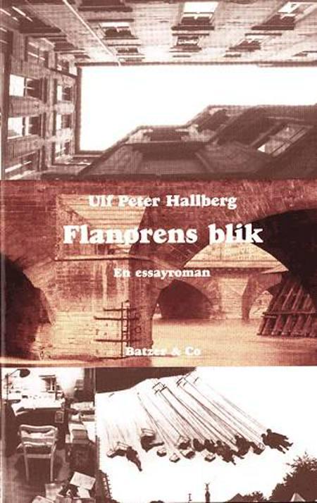 Flanørens blik af Ulf Peter Hallberg