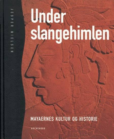 Under slangehimlen af Jesper Nielsen