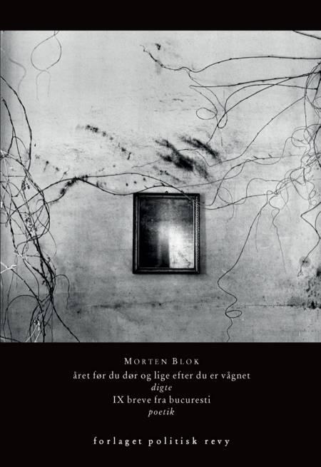 Året før du dør og lige efter du er vågnet af Morten Blok