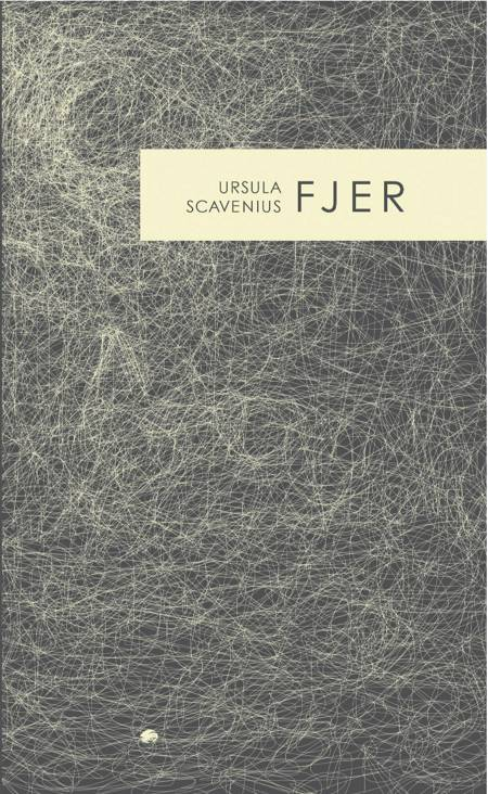 Fjer af Ursula Scavenius