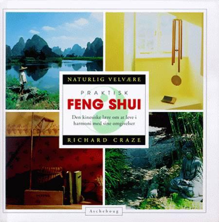 Praktisk Feng Shui af Richard Craze
