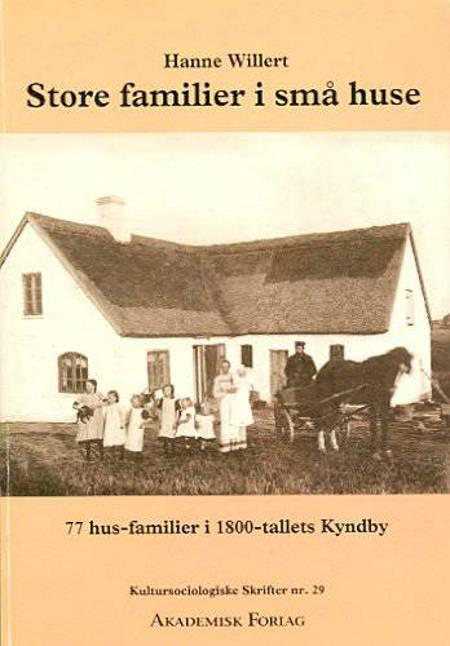 Store familier i små huse af Hanne Willert