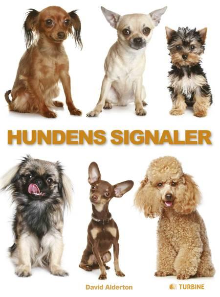 Hundens signaler af David Alderton