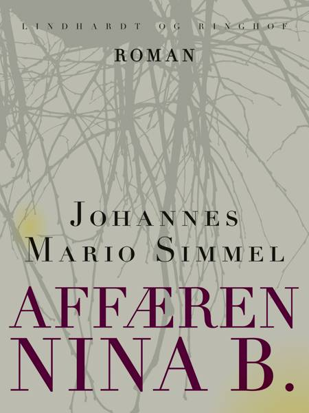 Affæren Nina B. af Johannes Mario Simmel