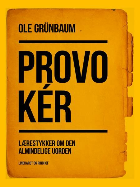 Provokér: Lærestykker om den almindelige uorden af Ole Grünbaum