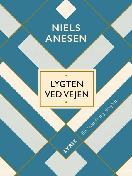 Lygten ved vejen af Niels Anesen
