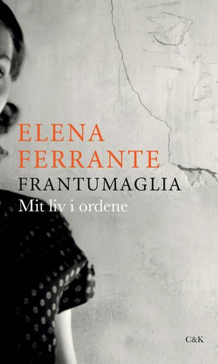 Frantumaglia af Elena Ferrante