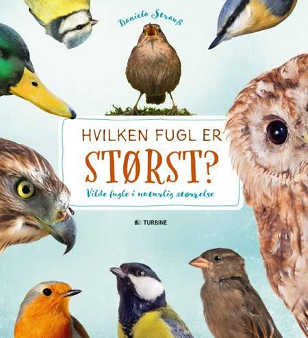 Hvilken fugl er størst? af Daniella Strauss