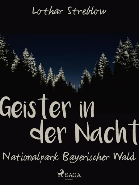 Geister in der Nacht. Nationalpark Bayerischer Wald af Lothar Streblow