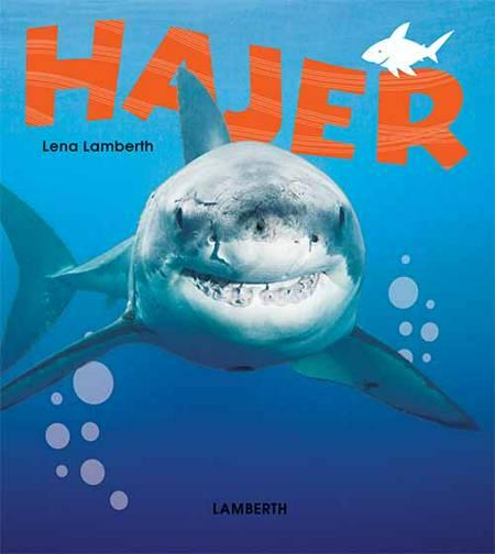 Hajer af Lena Lamberth