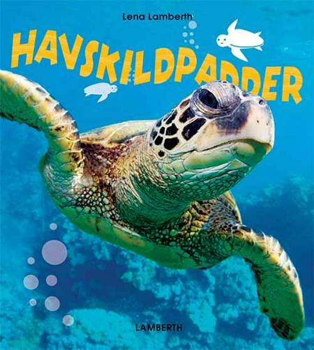 Havskildpadder af Lena Lamberth