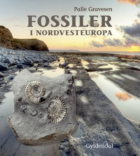 Fossiler i Nordvesteuropa af Palle Gravesen