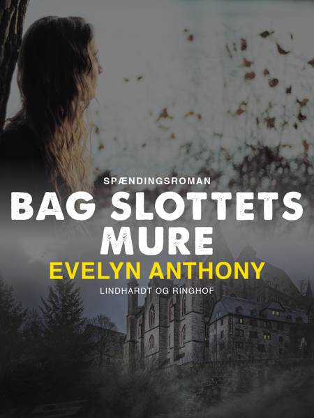Bag slottets mure af Evelyn Anthony
