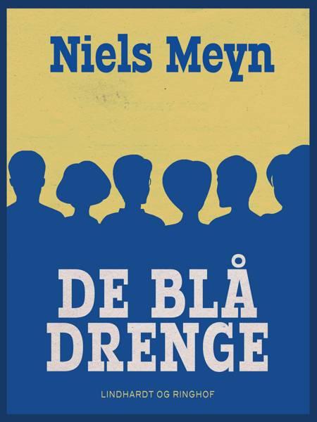 De blå drenge af Niels Meyn