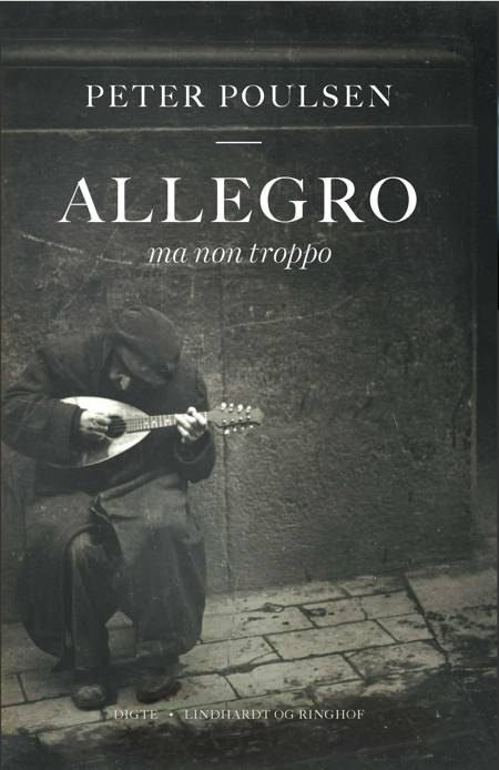 Allegro ma non troppo af Peter Poulsen