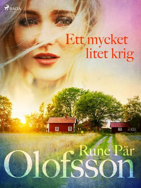 Ett mycket litet krig af Rune Pär Olofsson
