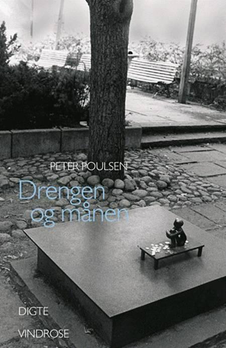 Drengen og månen af Peter Poulsen