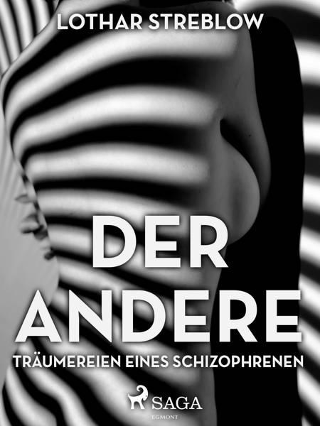 Der Andere - Träumereien eines Schizophrenen af Lothar Streblow