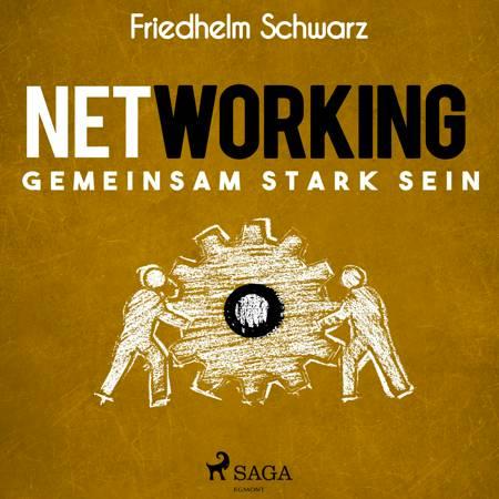 Networking - Gemeinsam stark sein af Friedhelm Schwarz