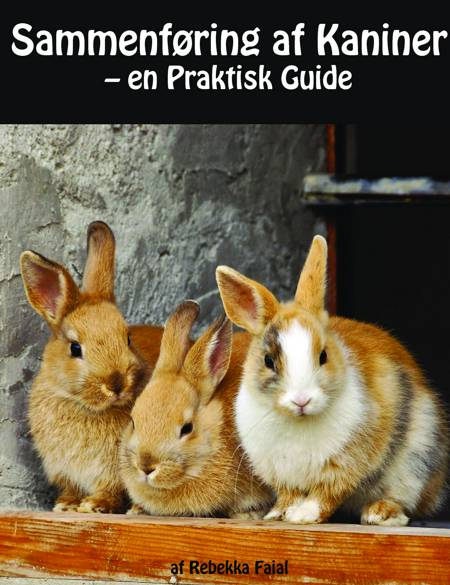 Sammenføring af Kaniner af Rebekka Faial