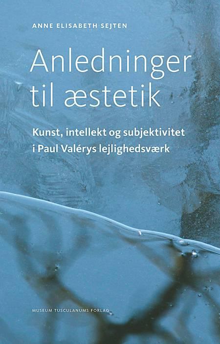 Anledninger til æstetik af Anne Elisabeth Sejten