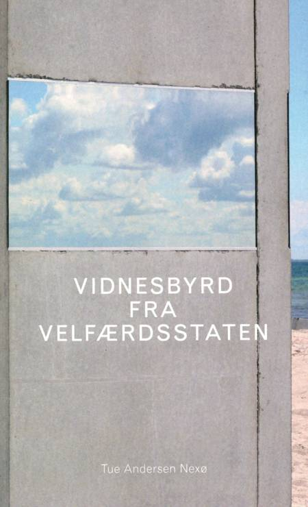 Vidnesbyrd fra velfærdsstaten af Tue Andersen Nexø