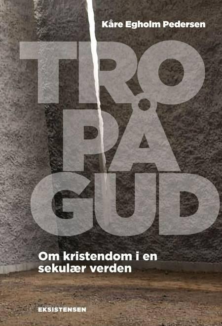 Tro på Gud af Kåre Egholm Pedersen