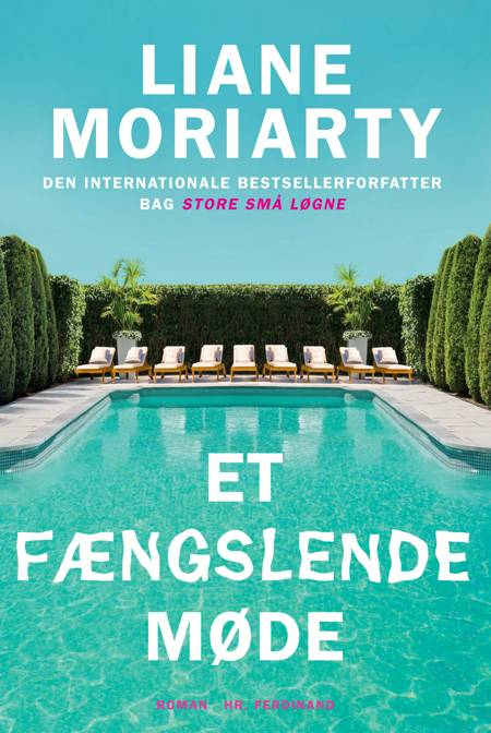Et fængslende møde af Liane Moriarty