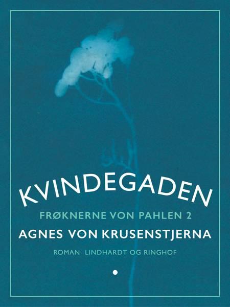 Kvindegaden af Agnes Von Krusenstjerna