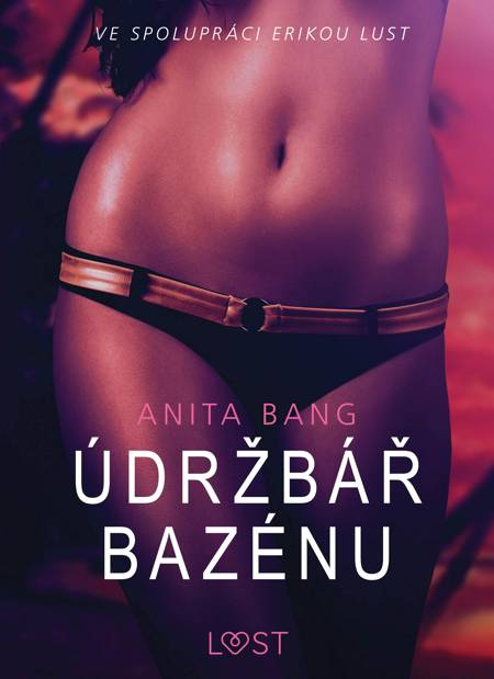 Údržbář bazénu - Sexy erotika af Anita Bang