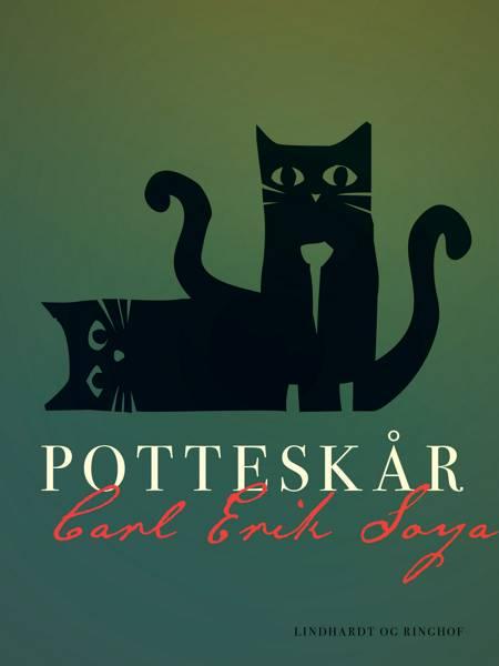 Potteskår af Carl Erik Soya
