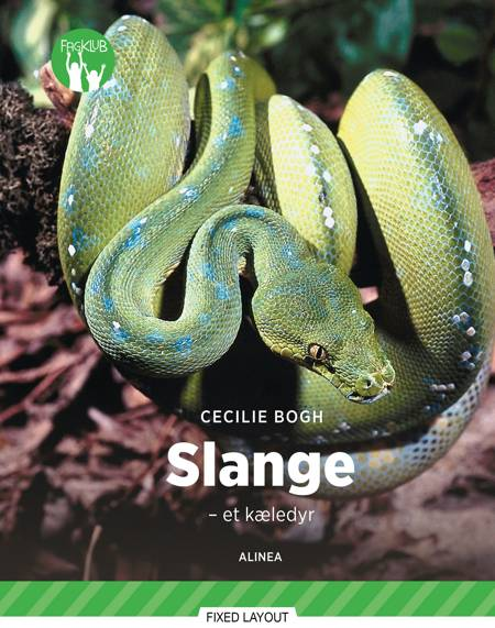 Slange af Cecilie Bogh