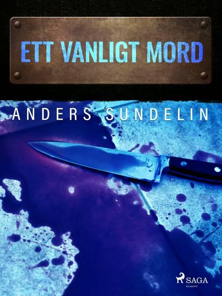 Ett vanligt mord af Anders Sundelin