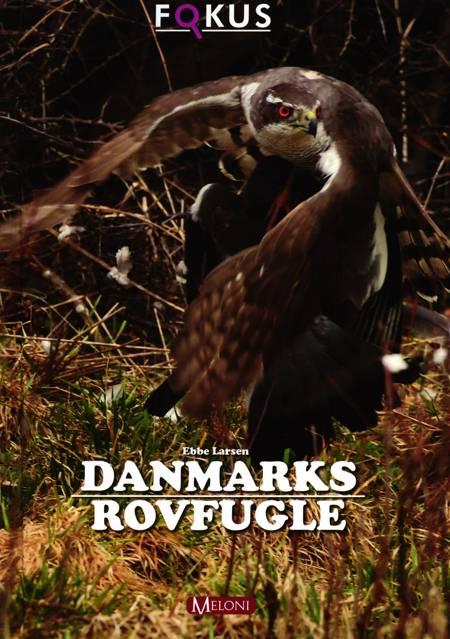 Danmarks rovfugle af Ebbe Larsen