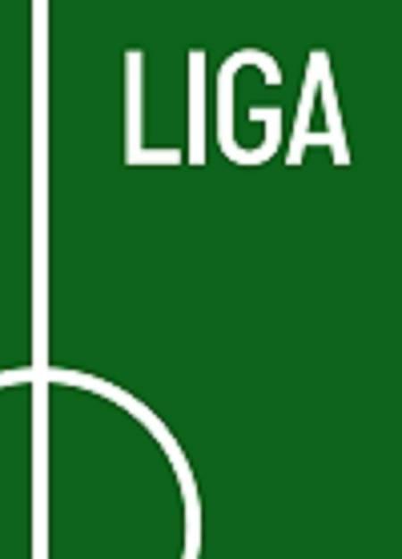 LIGA af Lars Rønbøg og Mikkel Davidsen