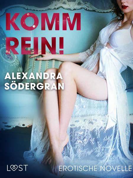 Komm rein! Erotische Novelle af Alexandra Södergran