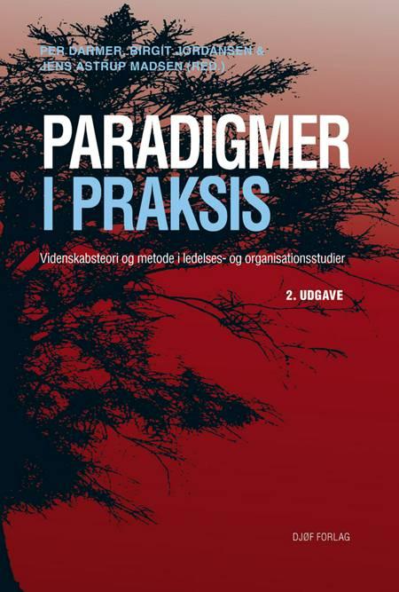 Paradigmer i praksis af Per Darmer, Jens Astrup Madsen, Birgit Jordansen, Jens Astrup Madsen og Johannes Thomsen og Birgit Jordansen og Jens Astrup Madsen