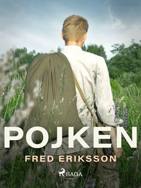 Pojken af Fred Eriksson