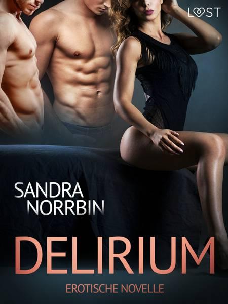 Delirium: Erotische Novelle af Sandra Norrbin