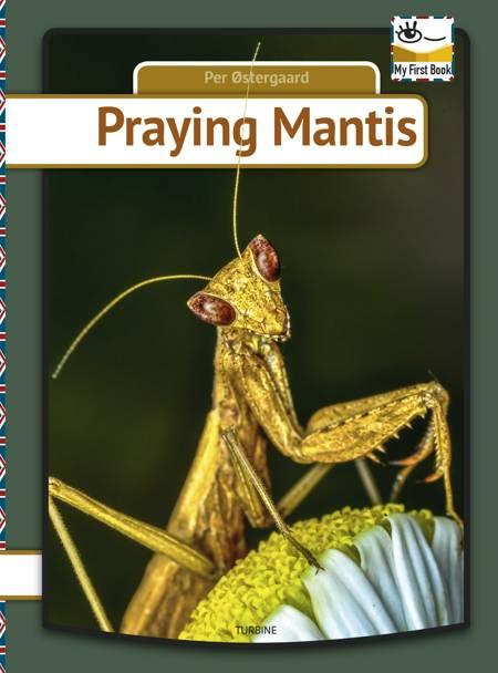 Praying mantis af Per Østergaard