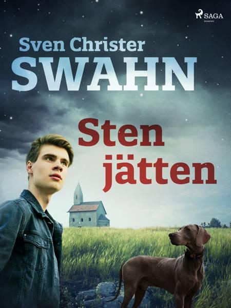 Stenjätten af Sven Christer Swahn
