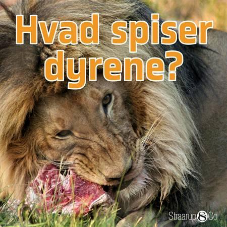 Hvad spiser dyrene? af Marianne Randel Søndergaard