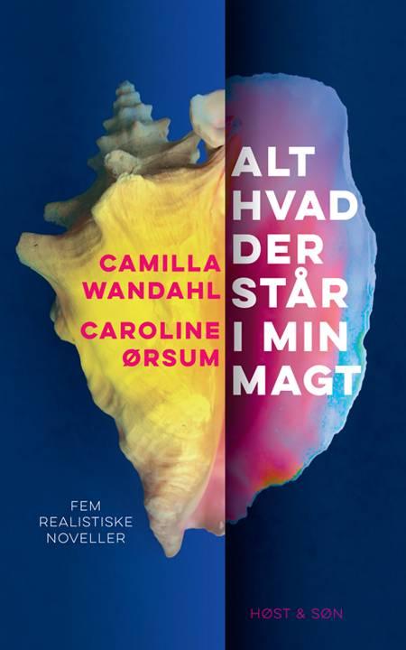 Alt hvad der står i min magt af Caroline Ørsum og Camilla Wandahl