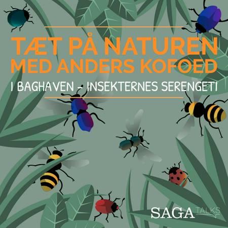 I baghaven - Insekternes Serengeti af Anders Kofoed og Christina Leonora Steffensen