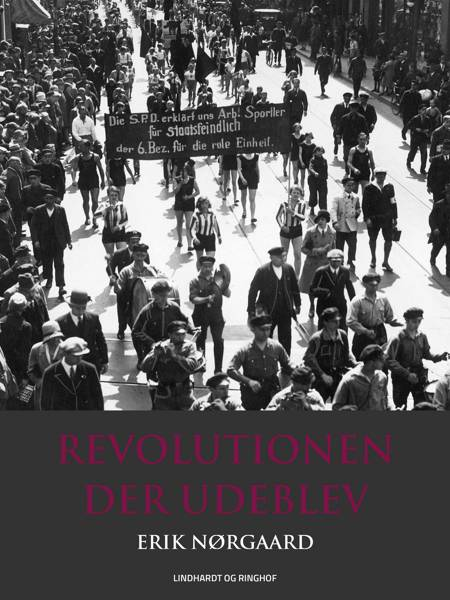 Revolutionen der udeblev af Erik Nørgaard